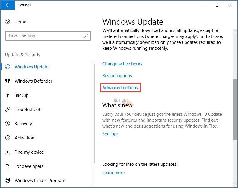 Tạm dừng cập nhật Windows trong 35 ngày